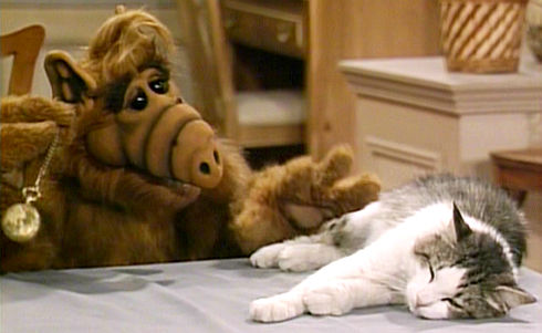 Alf und Lucky in «Alf – Looking for Lucky»