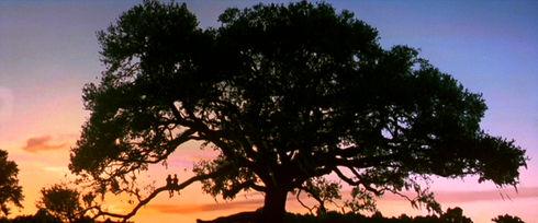 Hanna R. Hall und Michael Conner Humphreys in «Forrest Gump»