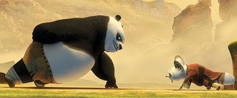 «Kung Fu Panda»