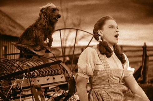Terry und Judy Garland in «The Wizard of Oz»
